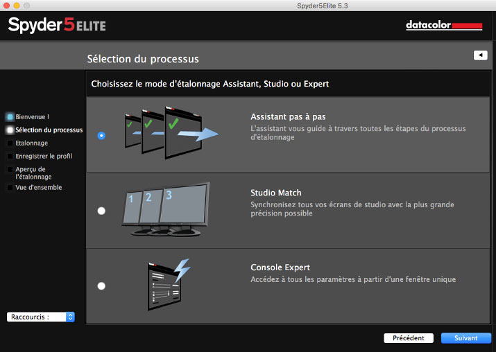 Selecting the process before screen calibration with Spyder5Elite