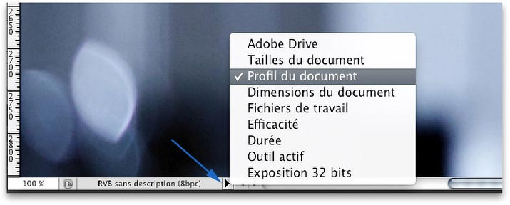 Document Profile menu in the Photoshop status bar