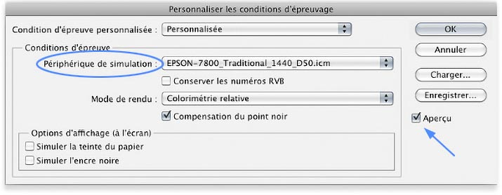 """Customize Proofing Conditions"" Menu in Photoshop"