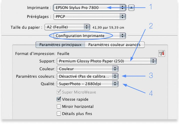 Print Options for an Epson Photo Printer